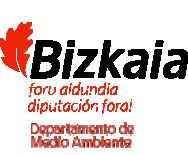 Logotipo de la Diputación Foral de Bizkaia